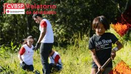 Visualizar - Cruz Vermelha Brasileira