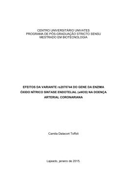 CENTRO UNIVERSITÁRIO UNIVATES PROGRAMA DE PÓS