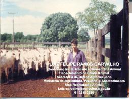 LUIZ FELIPE RAMOS CARVALHO