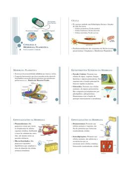 10. Citologia – Membrana Plasmática