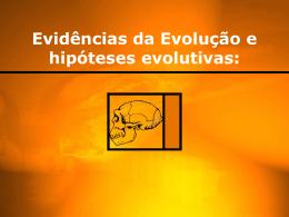 PDF - Evidencias