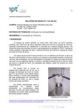 RELATÓRIO DE ENSAIO No 1 010 385-203 CLIENTE