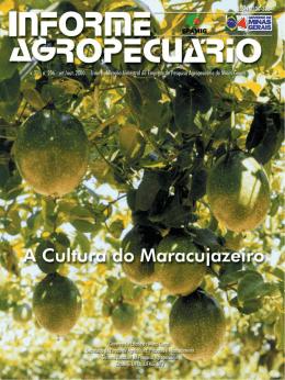 Informe Agropecuário nº206 - A cultura do maracujazeirohot!