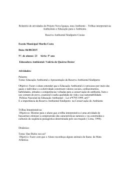 Relatório de atividades do Projeto Nova Iguaçu