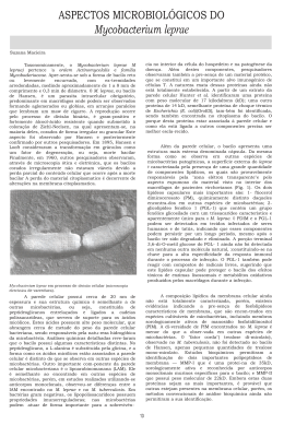 ASPECTOS MICROBIOLÓGICOS DO Mycobacterium leprae