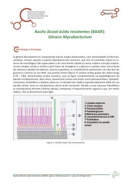 Bacilo álcool-ácido resistentes (BAAR)
