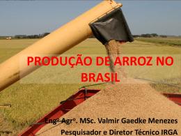 PRODUÇÃO DE ARROZ NO BRASIL