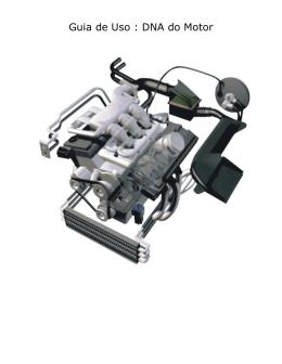 Guia de Uso : DNA do Motor