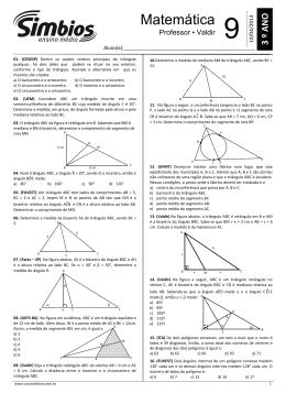 13. SB-09 - Lista 09 - Pontos notáveis e polígonos convexos