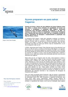 Açores preparam-se para salvar Cagarros