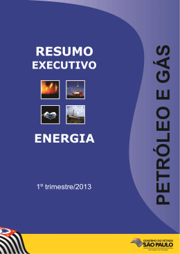 (Resum. Exec. Petróleo e Gás 1 2013)