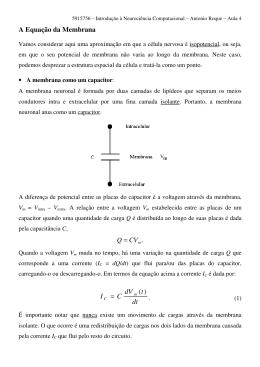 A Equação da Membrana