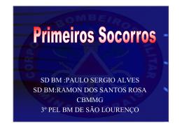 sd bm :paulo sergio alves sd bm:ramon dos santos rosa cbmmg 3º