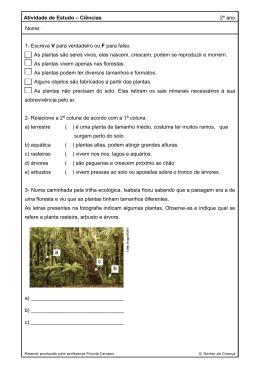CIE - Atividade - nucleodacrianca.com.br