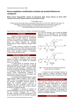 Novos peptídeos modificados isolados da ascídia Didemnum