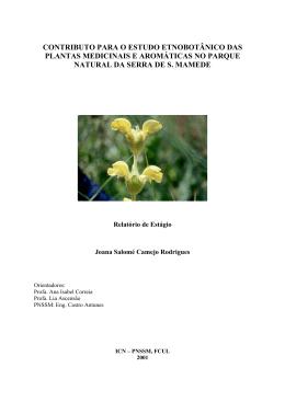 contributo para o estudo etnobotânico das plantas medicinais e