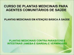 plantas medicinais contra parasitoses intestinais (ameba e giardia)