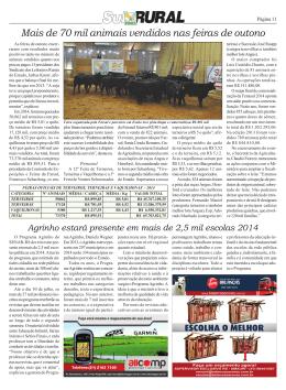 Página 11 - Sul Rural