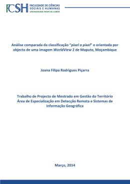 Trabalho de Projecto de Mestrado Joana Piçarra