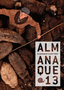 Clique e faça do Almanaque 2013