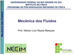 Mecânica dos Fluidos - Prof. Nelson Luiz Reyes Marques
