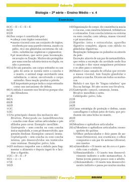 V.4 - Sistema de Ensino Energia