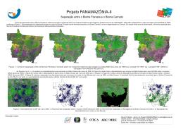 Separação entre os Biomas Floresta e Cerrado