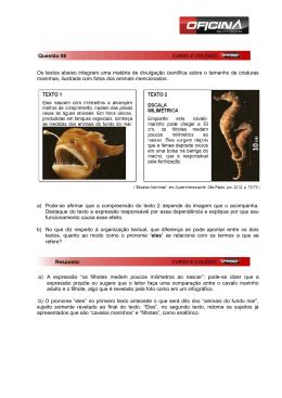 Os textos abaixo integram uma matéria de divulgação científica