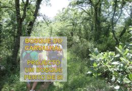 Cadoiço – Carvalhal – Aljubarrota/Alcobaça Juncal – Porto de Mós