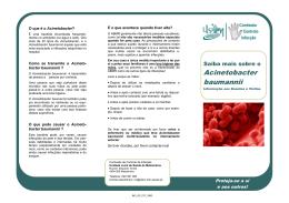 Saiba mais sobre o Acinetobacter baumannii