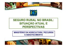Painel 5 - Seguro Rural
