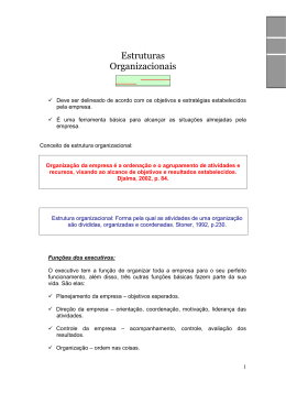 Estrutura Organizacional - Professor Cezar A Oliveira