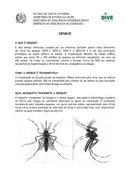 Dengue - Para população