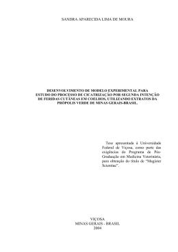 SANDRA APARECIDA LIMA DE MOURA Tese apresentada à