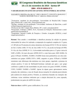variabilidade em genes do genoma mitocondrial de suínos