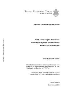 Amanda Fabiana Baião Fernando Fe(III) como aceptor de