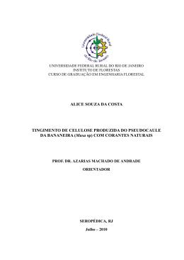 ALICE SOUZA DA COSTA TINGIMENTO DE CELULOSE