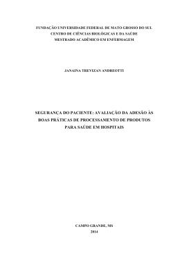 Janaina Trevizan Andreotti - Universidade Federal de Mato