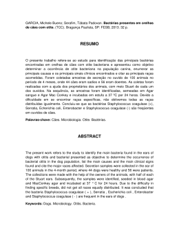 RESUMO ABSTRACT