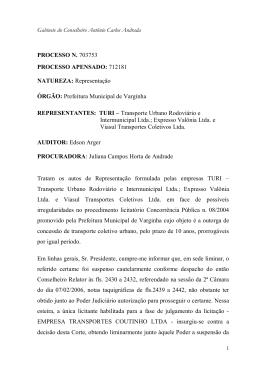 Leia o voto na íntegra - Conselheiro Antônio Carlos Andrada