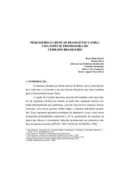 pequizeiro (caryocar brasiliense camb.): uma espécie