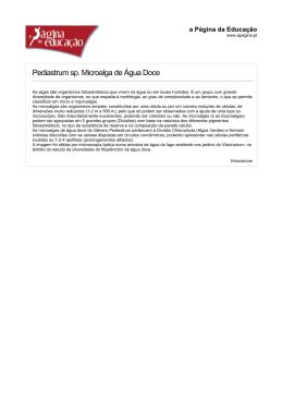 Pediastrum sp. Microalga de Água Doce
